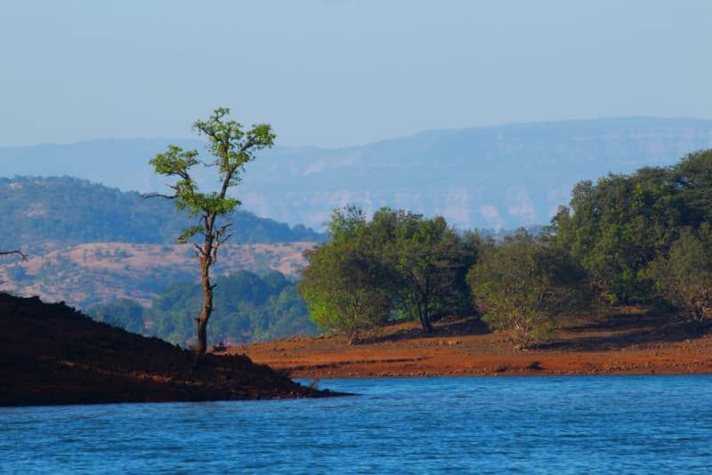 Backwaters of Koyna Dam