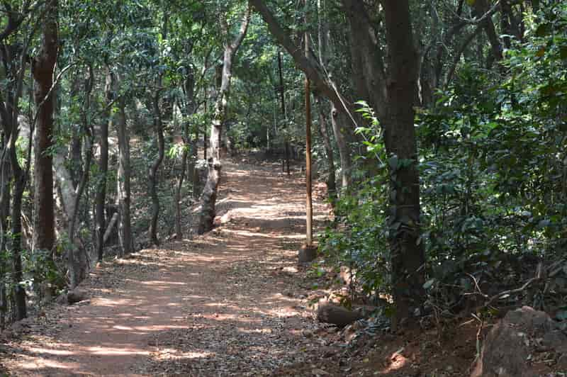Matheran is an eco-friendly hill station