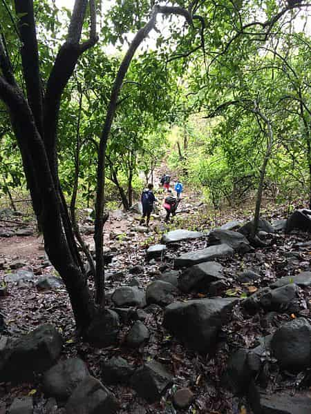Trekkers at the Karnala Bird Sanctuary
