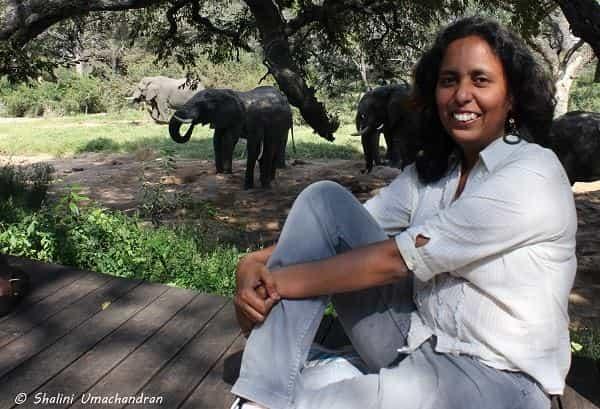 Mridula at the Manyeleti Game Reserve, South Africa