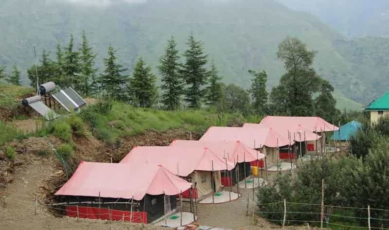 Snow Trail Camps, Chail, Shimla