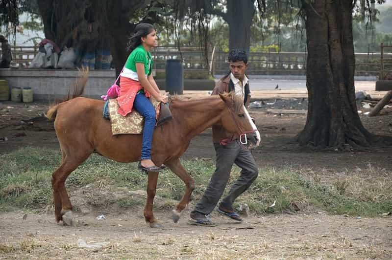 Horse Ride Udaipur