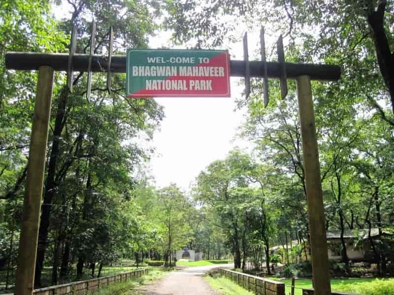 Bhagwan Mahaveer National Park