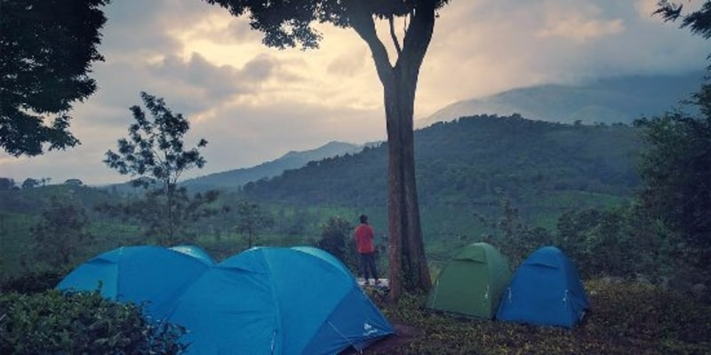 Camps at Wayanad