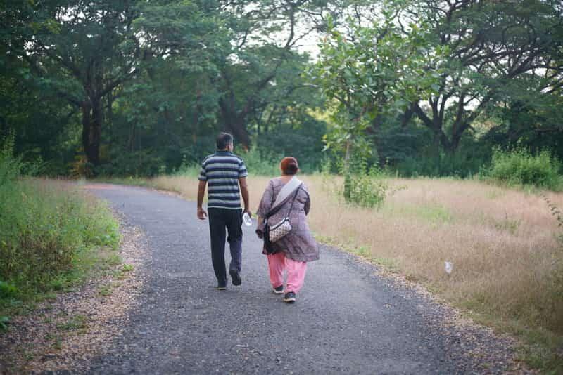Enjoy trekking in the forests of the Sanjay Gandhi National Park