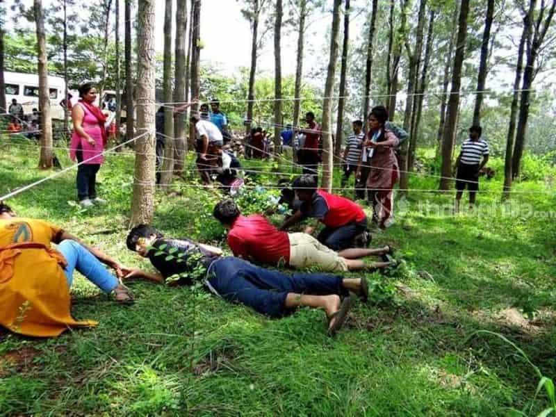Windflower Prakruthi Jungle Survival Theme