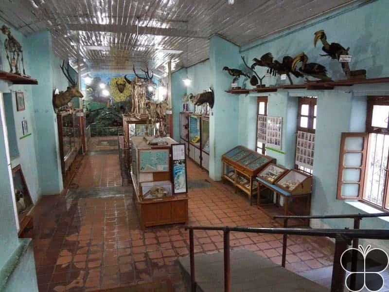 Shenbaganur Museum