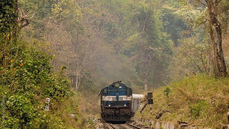 Take the train through Lataguri Forest Reserve