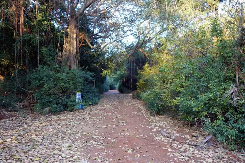 The Guindy Park