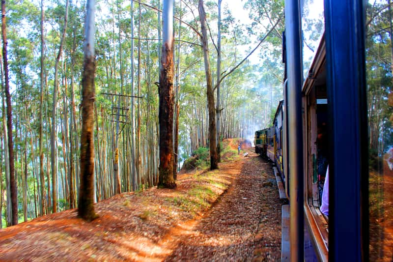 A train ride in Coonoor