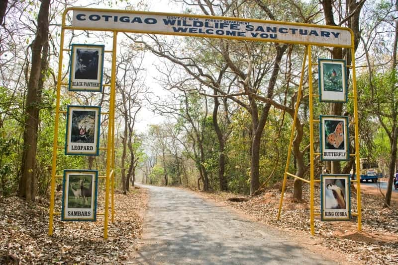 Cotigao Wildlife Sanctuary