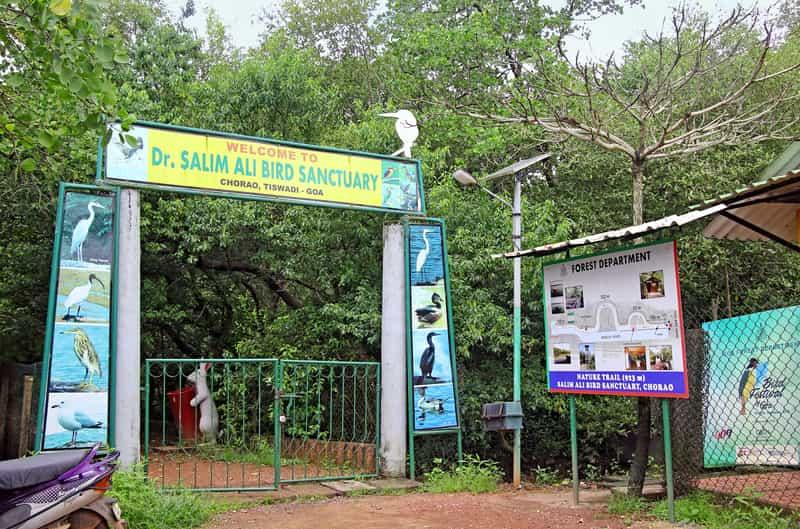 Dr Salim Ali Bird Sanctuary Goa
