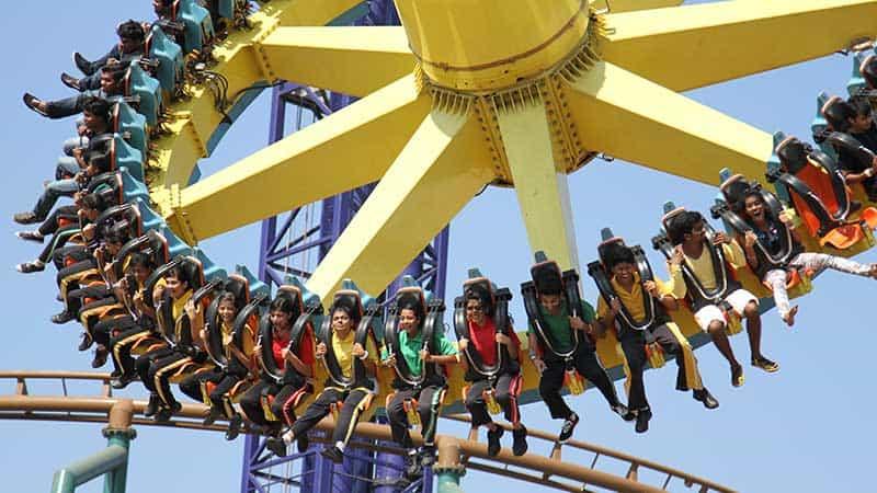 Enjoy thrilling rides at an amusement park