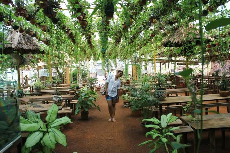 Ponda and Mapusa offer the most interesting spice tours in Goa