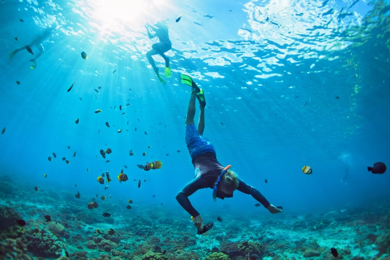 Snorkelling options are many in Goa