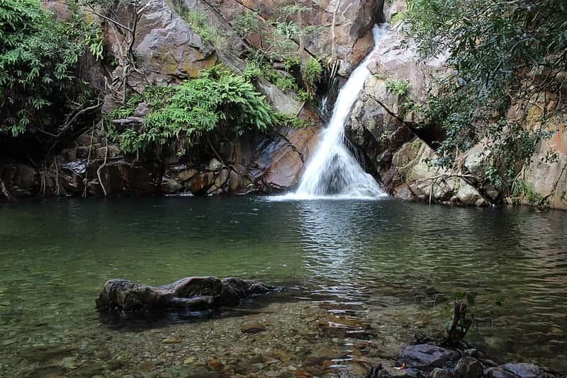 Stream at Nagalapuram Waterfalls