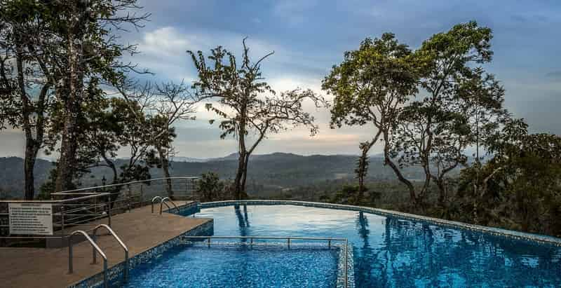 Swimming In The Misty Hills Of Coorg
