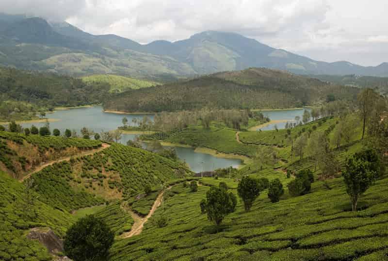 The Lush Green Hills Of Yelagiri