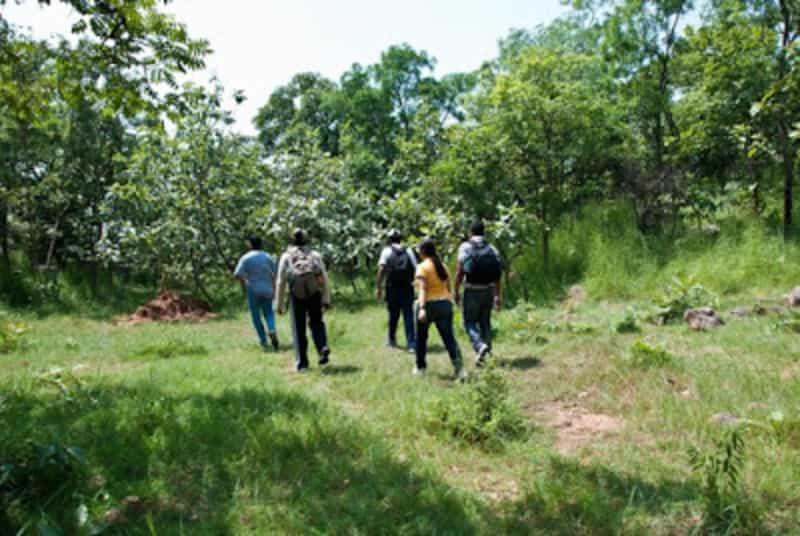 Trekkers at the Narsapur Forest