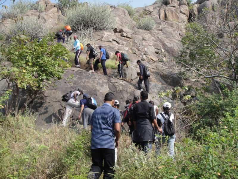 Trekkers hiking in the nearby Kondamadugu hills