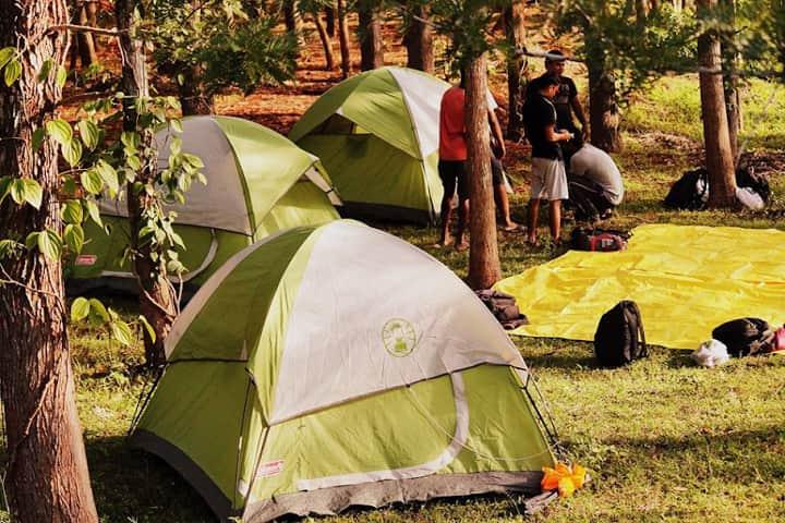 Yelagiri Campsite