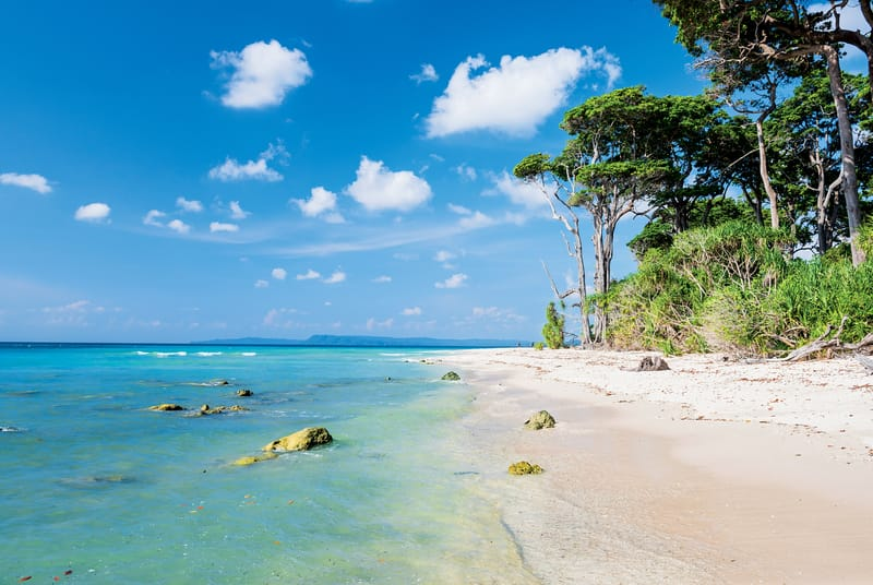 Some of the most pristine beaches are here in the Andamans