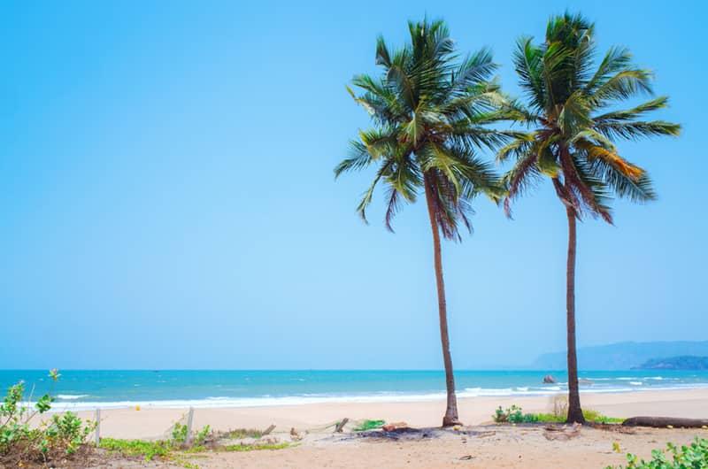 Beautiful Beach at Agonda