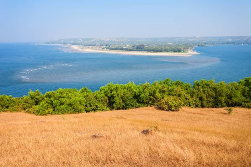 Panoramic View of Mandrem, Ashwem and Morjim Beaches