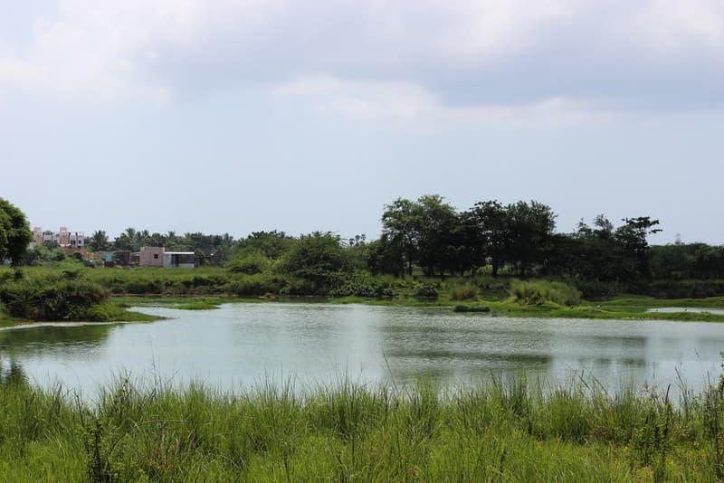 Perumbakkam Lake