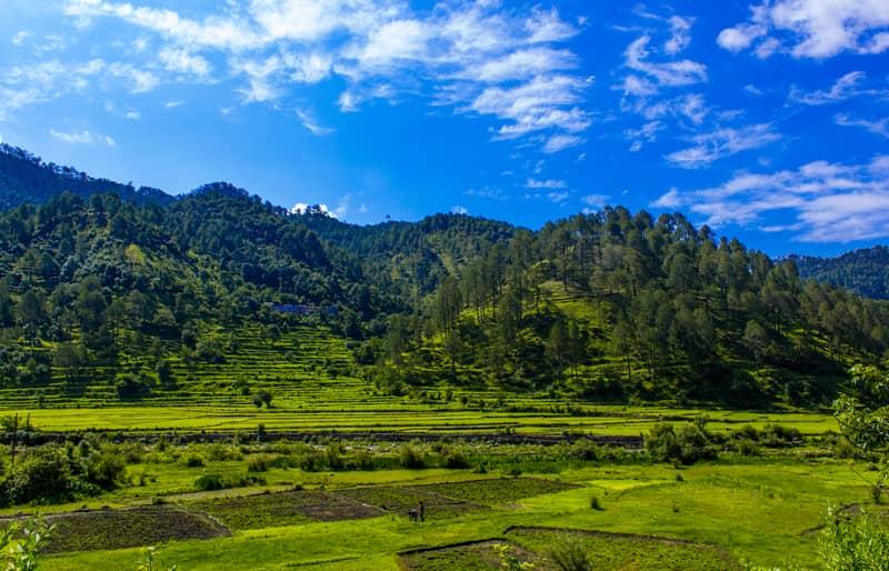 Pastoral Beauty of Ranikhet