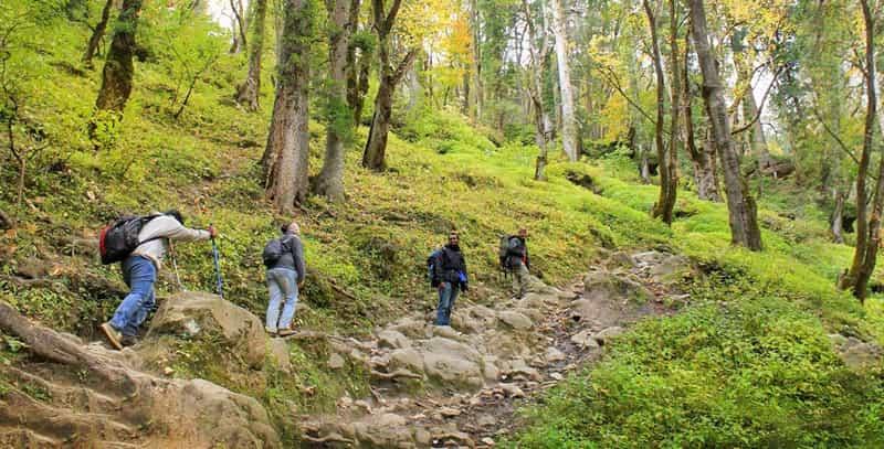 Trekkers enroute Kheerganga