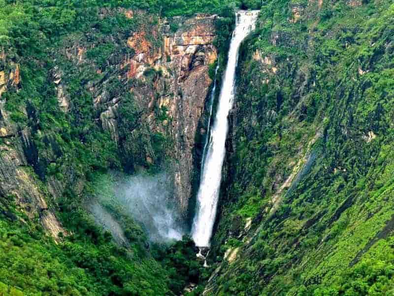 Unexplored Forests around the Thalaiyar Waterfalls