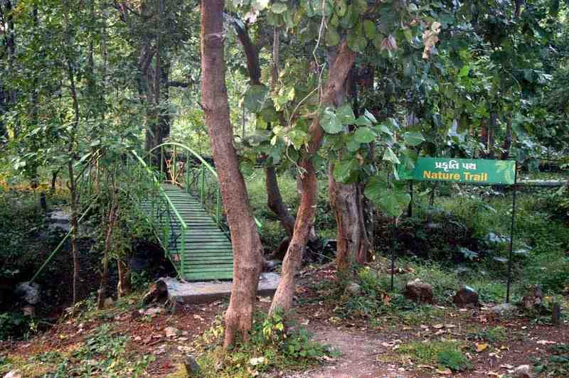 Padamdungari Nature Trail