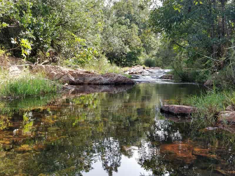 Ubbalamadugu/Tada Falls