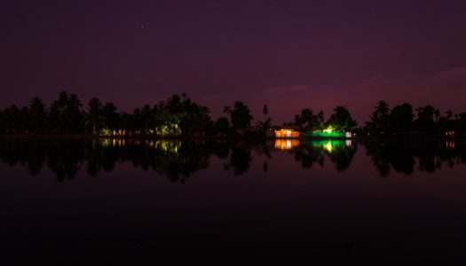 Discover Top Things to do in the Tranquil Dark Realm of Alleppey