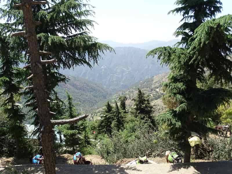 Shaily Peak
