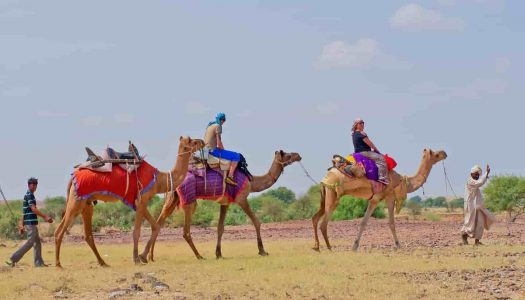 Top Places To Visit In Jaisalmer At Night That Offer A Memorable Experience
