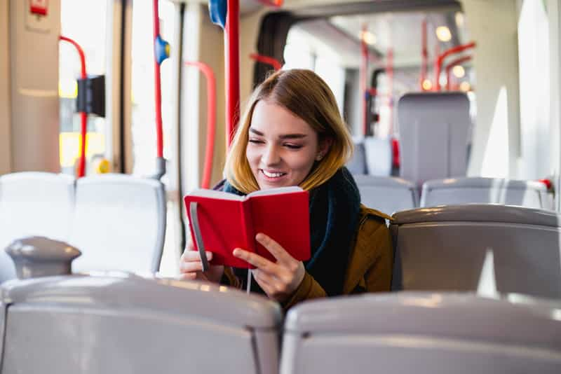 Traveler in Public Transport