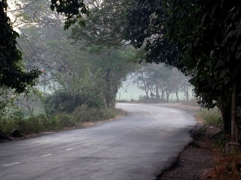 Aarey Milk Colony is easily one of the most haunted places