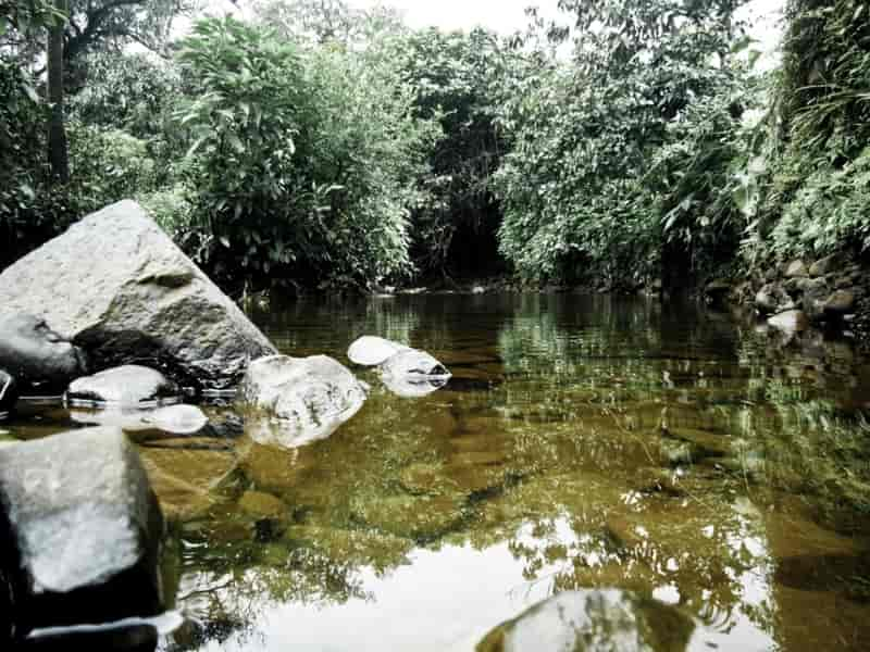 Catchment Area of Mulshi Dam