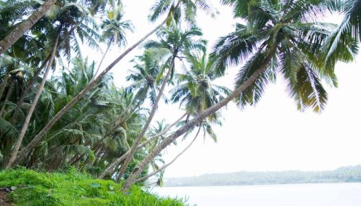 17 Monsoon Getaways Near Mumbai For A Fabulous Vacation