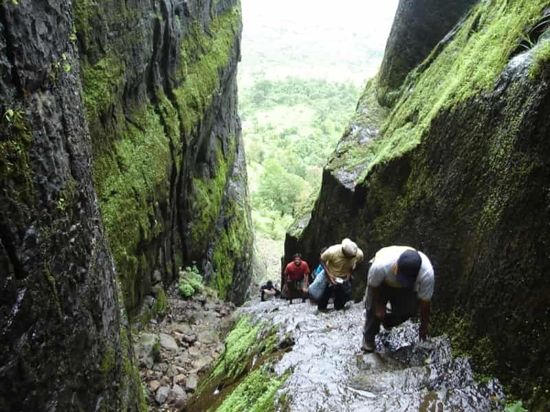 Trekking to Sudhagad Fort