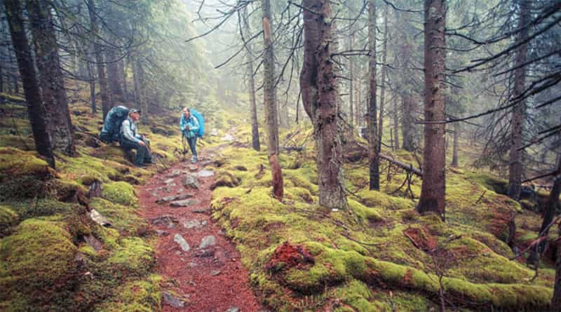 Trekking at Nainital Peak