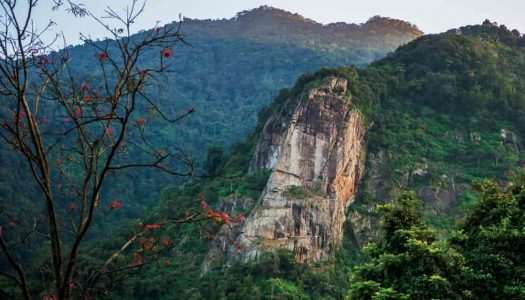 16 Splendid Things To Do On A Vacation in Ooty
