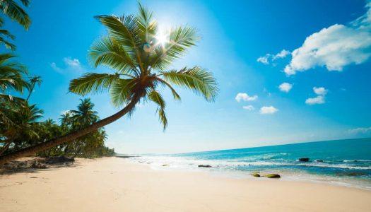 12 Spectacular Beaches Near Mumbai