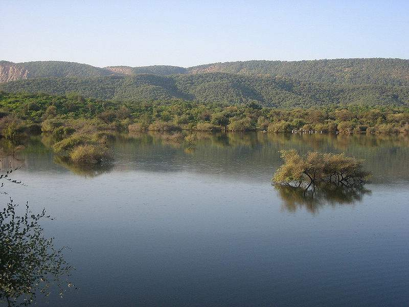 A beautiful wildlife sanctuary with stunning grasslands, forests and magnificent rocky landscapes