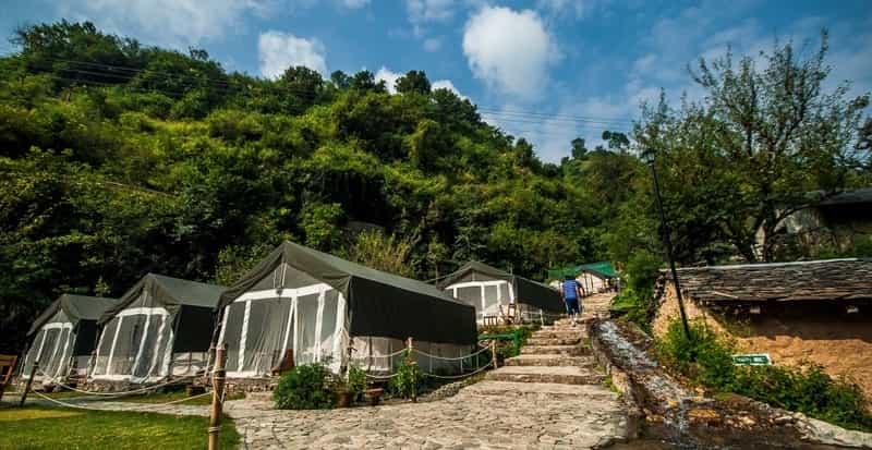 Camping at Shoghi, Shimla