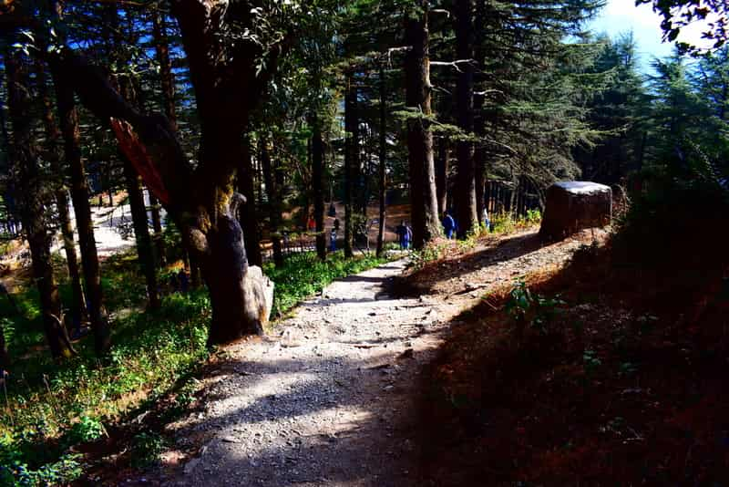 Enjoy scenic views as you take romantic walks along the many pathways in Mussoorie