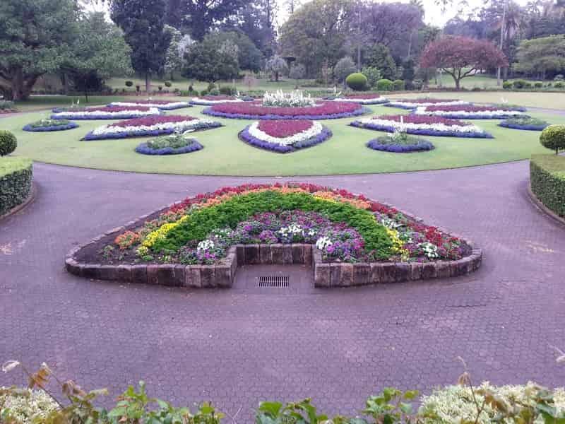 Kidwai Garden