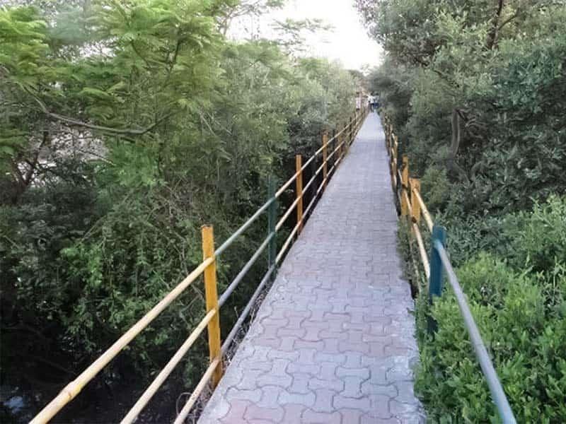 Rajiv Gandhi Joggers Park is a romantic spot for couples